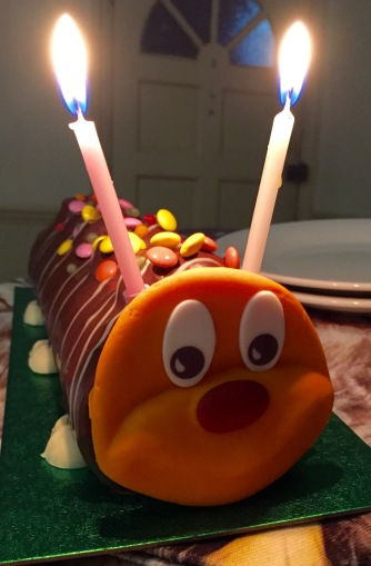 My caterpillar birthday cake from The Bloke
