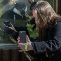 The Bloke taking a picture of me, taking picture of the monkeys...