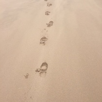 The Bloke's footprints