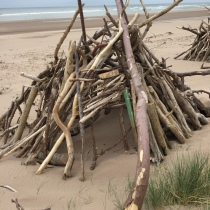 Driftwood huts on St Cyrus beach