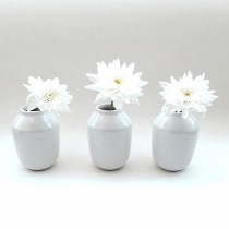 Flowers in Vases Flat Lay