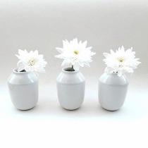 Flowers in Vases Flat Lay