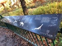 Dino Information, Crystal Palace Park