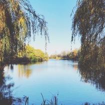 The Boating lake, Crystal Palace Park