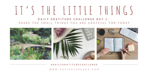 It's the Little Things - Daily Gratitude Challenge
