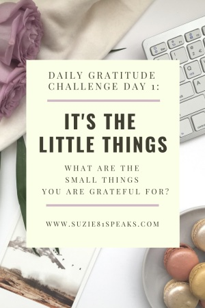 It's the Little Things Daily Gratitude Challenge