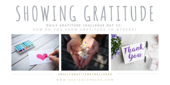 Daily Gratitude Challenge Showing Gratitude 2