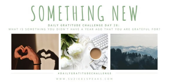 Daily Gratitude Challenge What IS SOMETHING YOU DIDN'T HAVE A YEAR AGO THAT YOU ARE GRATEFUL FOR (1)